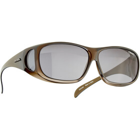 Alpina Sunglasses Overview, zwart